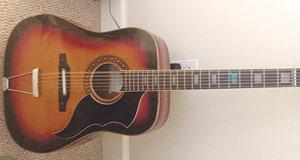 Ray-McLeod-guitar-pix-081117
